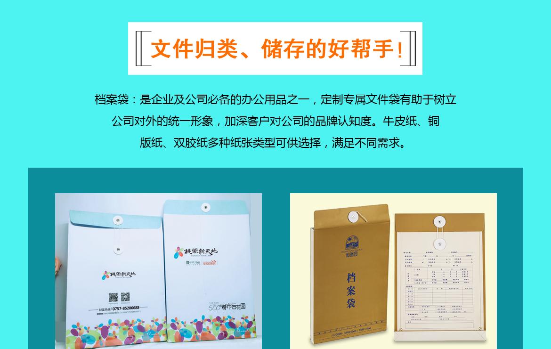 企业宣传文件袋设计